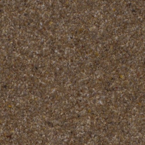 Brown Carpets